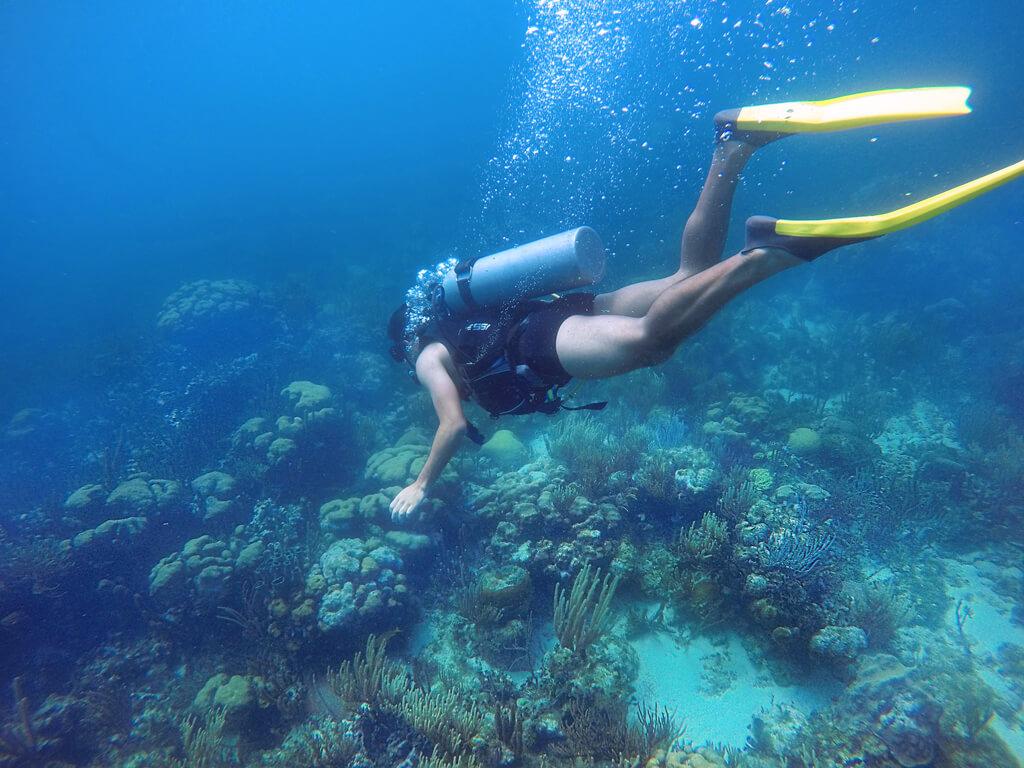 Mergulho em Providencia