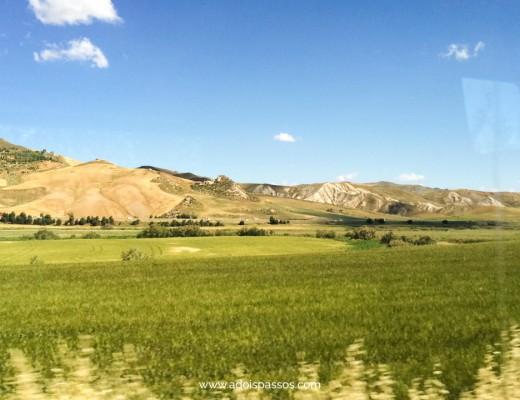 Campos verdes ao longo da viagem de trem pela Sicília